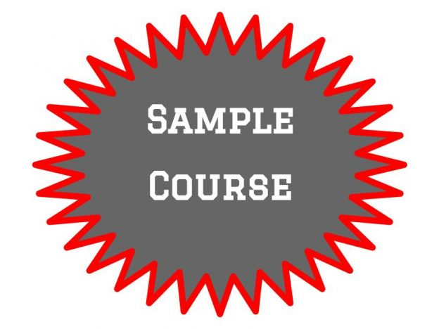 .Sample Course course image